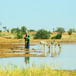 Project: Investigating the impact of climate extremes on future water and food security