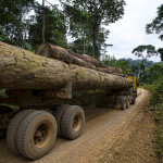 Forest cover and carbon stocks at risk as road network expands in Democratic Republic of Congo