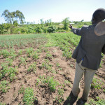 Analysing climate resilience within the climate-smart agriculture concept