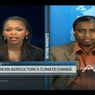Agriculture in focus: climate change planning in Kenya