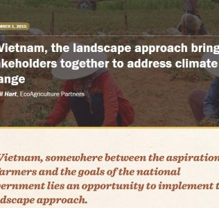 LACCMA: Addressing climate change through landscape approach in Vietnam
