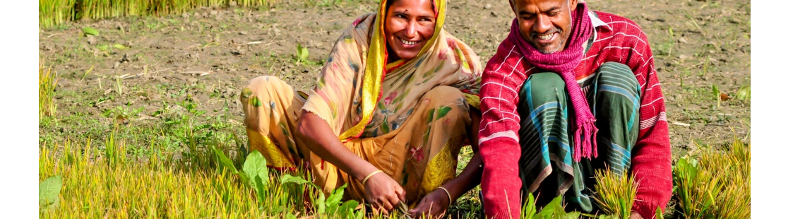 Charting gender issues in agricultural development research under climate change